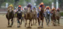 Paardenraces in Nederland: een gids voor beginners