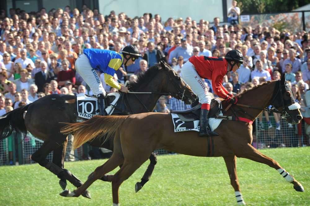 paardenren tijdens Waregem Koerse